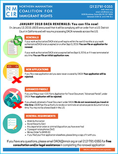 DACA Renewals January 2018 infographic