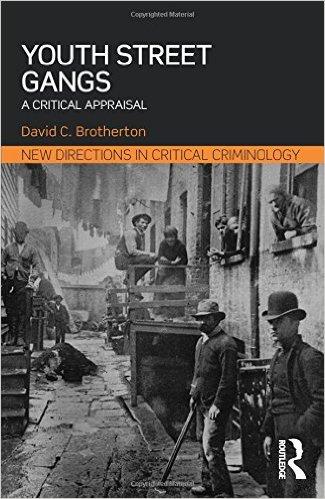 Youth Street Gangs: A Critical Appraisal book cover